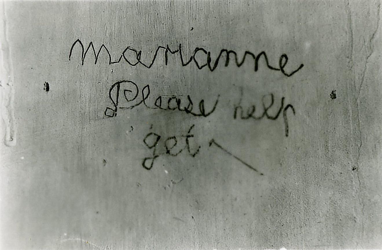 essay af marianne jelved